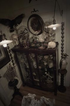 Collection #cabinet of #curiosities