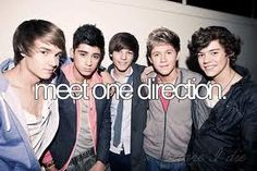 It would have to be the last thing on my bucket list to do because if I did meet 1D I would die!!