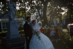 New to photoxo: Bride and Groom 1961