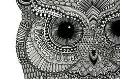 Nanquin owl
