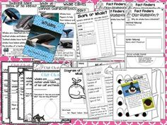 OCEAN ANIMALS READING, WRITING & MORE! Ocean unit packed full of learning fun!  FOUR informational texts with real pictures for: sharks, whales, crabs, seahorses, Chit Chat messages to go with the sharks and whales text, multiple Fact Finder Detective sheets for close reading to go with each text, Flip Flap sheets for each animal, Fact or Fiction sheet for each animal, All About Writing Templates, Craft for each animal with templates and directions. Over 120 pages of learning fun!!