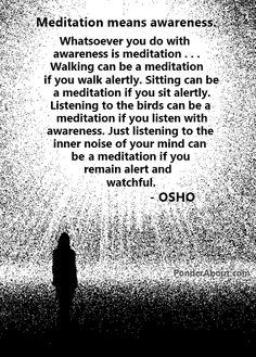 ..*Meditation means awareness