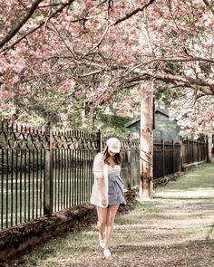 Boho and Braids Blossom Trees, Cherry Blossom, Dartmouth, Braids, Stripes, Blazer, Boho, Style, Fashion