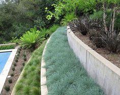 yard landscaping ideas 2013