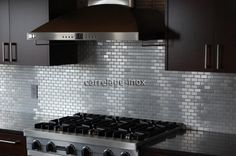 Stainless Steel Mosaic Tile 1x2