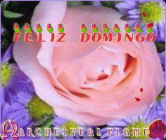 Happy Sunday, Buona Domenica, Feliz Domingo,Schönen Sonntag, Bon Dimanche, Χαρούμενη Κυριακή. Love and light, Amore e Luce, Amor y luz, Liebe und Licht Amour et lumière, Agape ke Fos, Αγάπη και Φως, #happy #Sunday #buona #Domenca #Feliz #Domingo #Schonen #Sonntag #Bon #Dimanche #Love #Light #amore #luce #amor #luz #liebe #licht #amour #lumiere #agape #fos #χαρούμενη #Κυριακή #Αγάπη #Φως  Archetypal Flame - Feliz Domingo 3