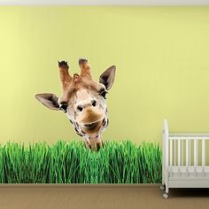 Grass Wall Mural Decal - Garden Wall Decal Murals - Primedecals