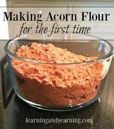 Making and Using Acorn Flour (for the first time)