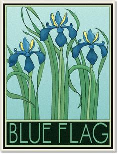 Blueflag Tile by Wildflower Graphics Motifs Art Nouveau, Art Nouveau Tiles, Art Nouveau Design, Design Art, Botanical Drawings, Botanical Illustration, Botanical Prints, Illustration Art, Art Deco Flowers