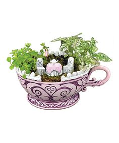 Look what I found on #zulily! Pink Teacup by Georgetown Home and Garden #zulilyfinds