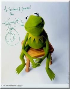 Kermit the Frog - the-muppets photo