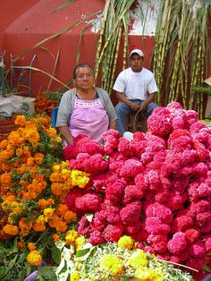 market flower,for the death day,in Oaxaca Mexico