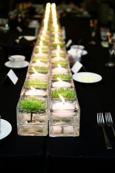 a runner of small square vases in the middle of the table with floating candles and floating green succulents