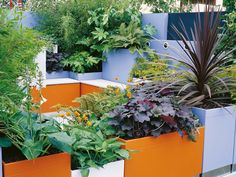 Let's focus on ways to make your patio pop with color... with decor! Its the easiest, fastest and most permanent way to add color to your whole garden.