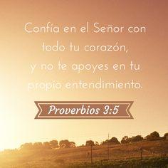 Confía en el Señor con todo tu corazón, y no te apoyes en tu propio entendimiento. #Proverbios 3:5 #Biblia
