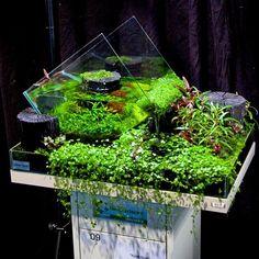 Aquarium by Kott