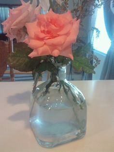 ever wondered what to do with an empty #patron #glass #bottle? :)