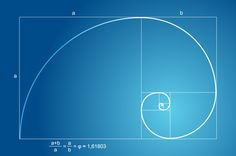 What Is Phi in Math   graphical representation of Phi using the Fibonnacci spiral
