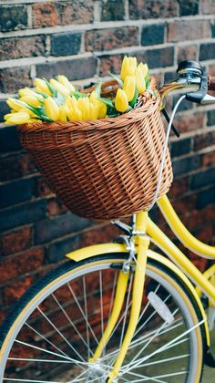Bike & Flowers ★ Download more Spring themed iPhone Wallpapers at @prettywallpaper