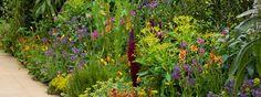 Arthritis Research show garden at RHS Chelsea Flower Show 2013 / RHS Gardening