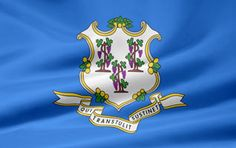 Picture of the Connecticut state flag.