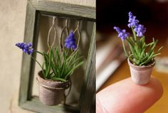 Dollhouse Rosy, amazing miniature artist in Japan