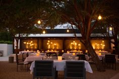 Seven Palm Springs Restaurants to Try When You're Soaking Up the Sun This Fall
