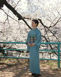 水色の色無地 Iromuji(colord kimono without designs) of light blue