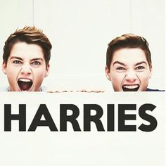 Jack and Finn Harries, double hot, double funny, double accents, and double trouble. British Youtubers, Best Youtubers, Perfect People, Pretty People, Beautiful Celebrities, Beautiful Men, Jack Finn, Finn Harries, Cute Twins