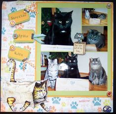 3 cats & a bag - 12x12 LO made by N. Hornberger