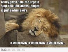 9GAG - A WHIM AWAY A WHIM AWAY A WHIM AWAY A WHIM AWAY