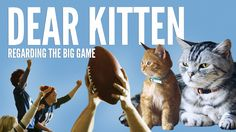 Buzzfeed's Superbowl ad for Friskie's cat food stars two cute kitties plotting how to make the most of the disruption caused by the big game