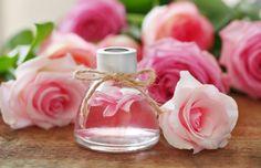Růže nepatří mezi klasické bylinky, na zahradách je ceněna spíše pro svou legendární krásu. Květy růží jsou však jedlé a dokonce léčivé. Hojí sliznice i pokožku, dělají dobře duši.
