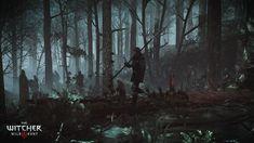 Видеоигры Ведьмак 3: Дикая Охота  Ведьмак Обои