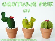 100%Heppie; DIY cactus