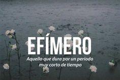 Las 20 palabras más bellas del castellano #Efímero