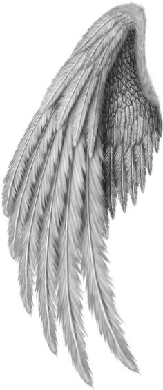 Tatoo Angel, Angel Wings Tattoo On Back, Angel Wings Png, Angel Wings Drawing, Wing Tattoos On Back, Wing Tattoo Men, Wing Tattoo Designs, Gold Angel Wings, Angel Wing Tattoos