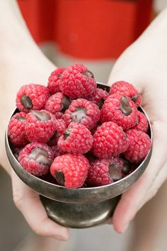 Easy to make and very tasty, chocolate filled raspberries! Perfect pairing to a yummy dessert.