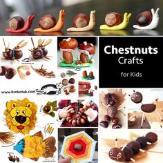 Chestnuts Crafts for kids