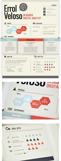Errol Veloso - Designer Digital Analyst . resume infographic