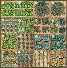 foot garden layout ideas – can't wait for spring!- great layout and a Square foot garden layout ideas can't wait for spring!- great layout and aSquare foot garden layout ideas can't wait for spring!- great layout and a Vegetable Garden Planner, Small Vegetable Gardens, Veg Garden, Edible Garden, Garden Beds, Vegetable Gardening, Garden Planters, Garden Frame, Bamboo Garden