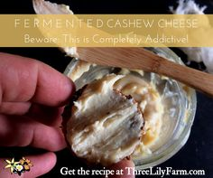 There aren't many dips, spreads, or cheeses that aren't completely  addictive. What is few and far between is a dip that isn't deleterious to  your health. This recipe for Cashew Cheese is one of the gems among the  dross of dips.