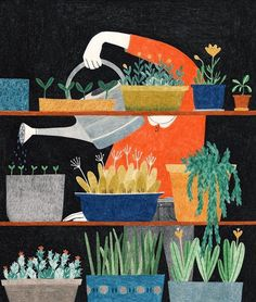 Never stop growing illustration by @liekevandervorst (at The Sill)
