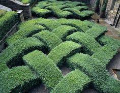 Topiary Gardens at Washington Old Hall, Tyne and Wear, UK (© Joe Cornish_National Trust)