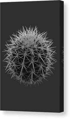 Cactus Canvas Print featuring the mixed media Cactus Plant by Marvin Blaine