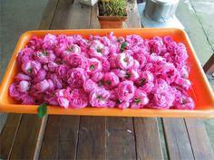 Εκατοντάφυλλα τριαντάφυλα στον χώρο επεξεργασίας. Raspberry, Fruit, Food, Eten, Raspberries, Meals, Diet