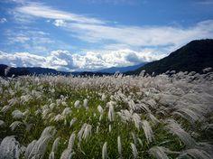 Kaida Highland, Nagano