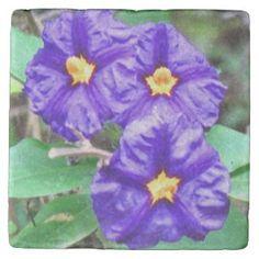 Stone Coaster Purple flower photograph #zazzle #gifts  #decor #style