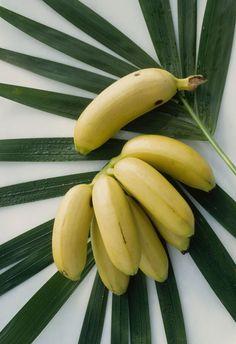 Chiquita mini banana