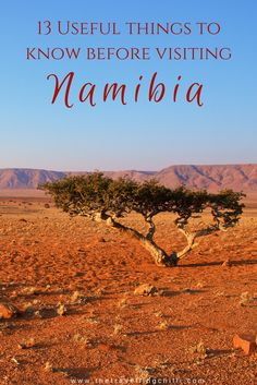 13 Essential things to know before visiting Namibia | Namibia travel tips | What everyone needs to know before travelling to Namibia | Useful things to know before visiting Namibia